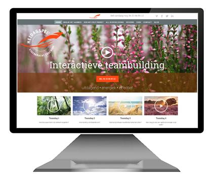 heidagspel wordpress website ontwerp graphic fish